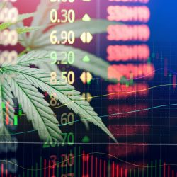 Top Cannabis Compliance Complaints & How to Handle Them